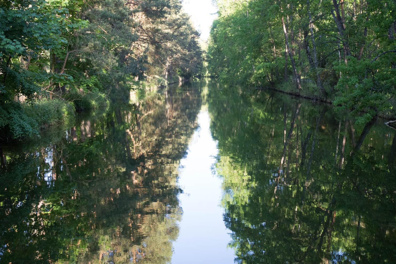 Wielki Kanał Brdy urzeka swoją malowniczością. Koniecznie muszę nim kiedyś spłynąć.