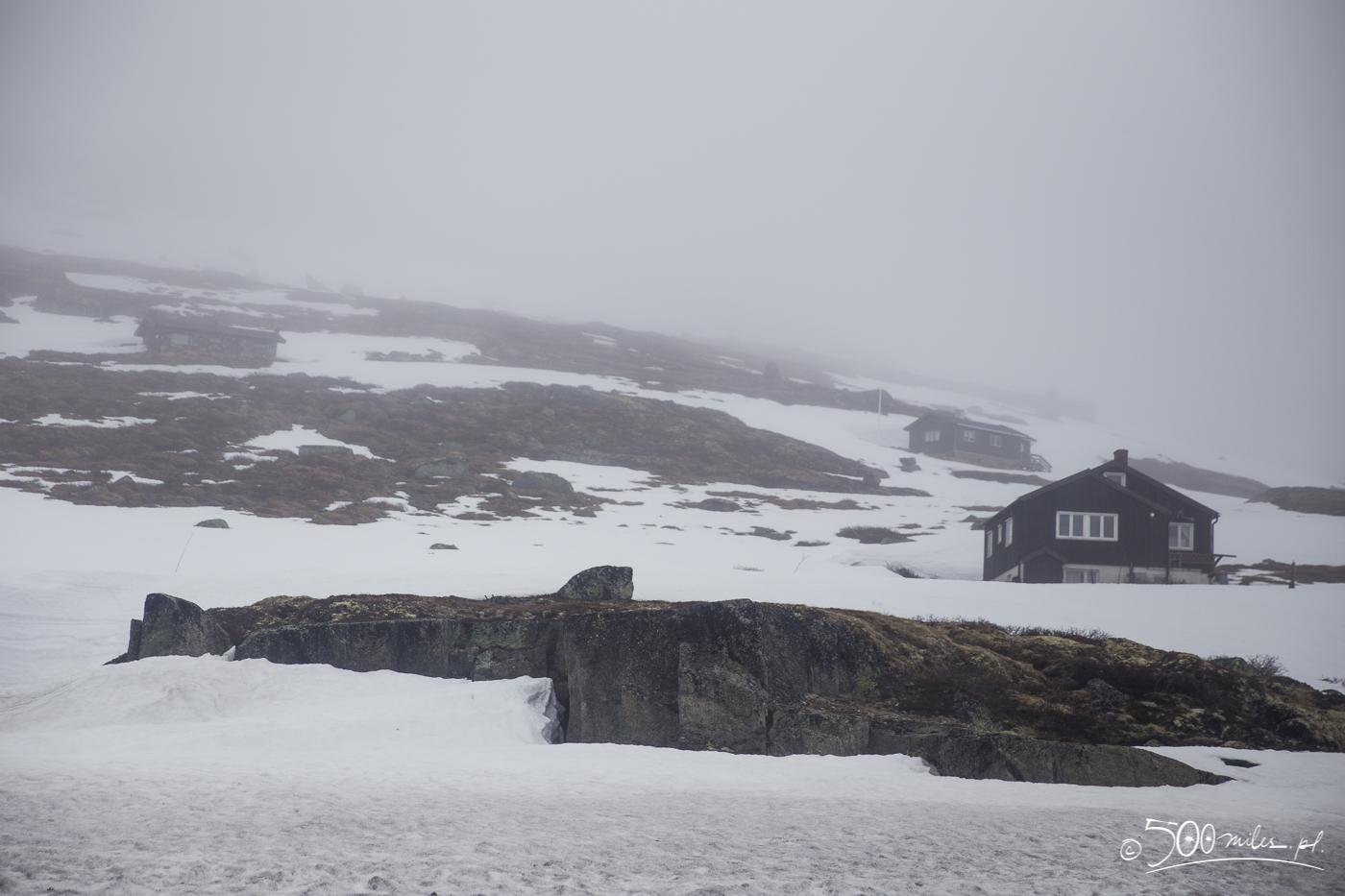 Oslo-Bergen train ride - snowy and foggy view
