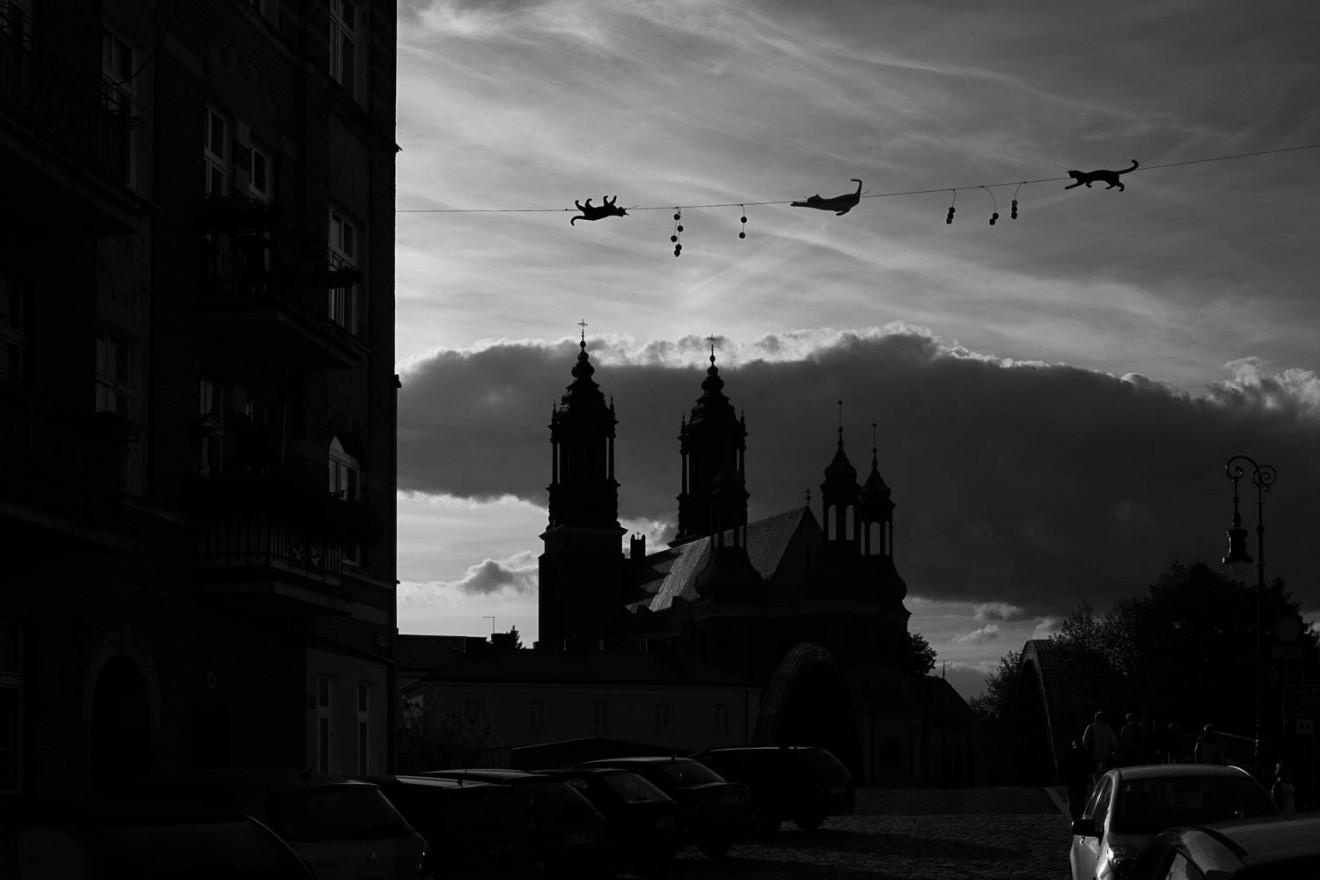 Katedra, Poznań